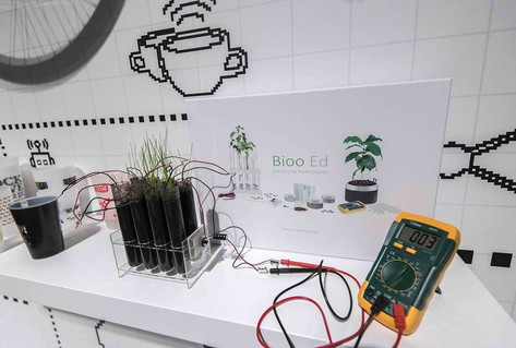 Square device plugged into plant, to charge mobile phones