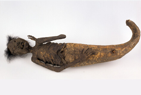 "Figure of a ningyo, the ""human fish"""