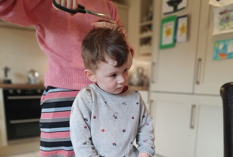 Boy on table at home having hair cut