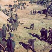 Soviet prisoners of war under the protection of German soldiers bury bodies of Jews